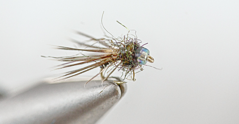 Black Caddis Emerger
