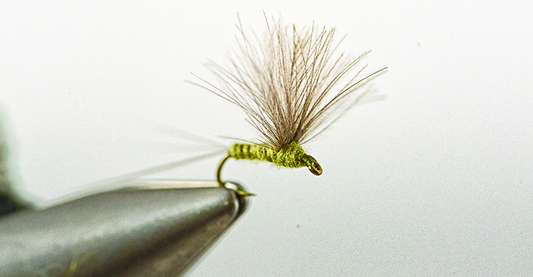 CDC Comparadun Blue Wing Olive